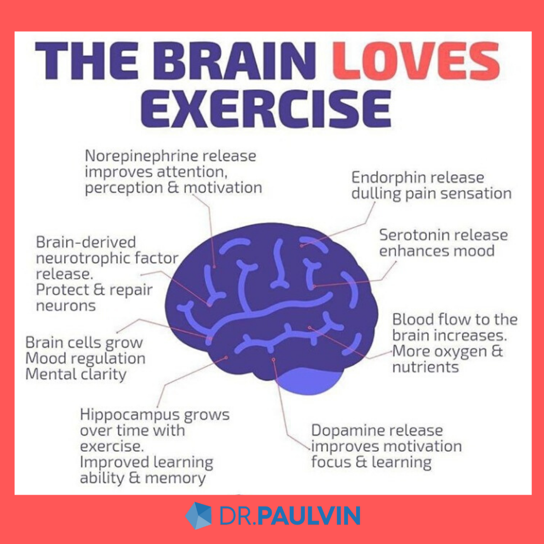 brain and exercise
